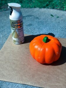 dt-mop-head-pumpkin-diy-spray paint