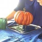 paint-pour-pumpkins-supplies