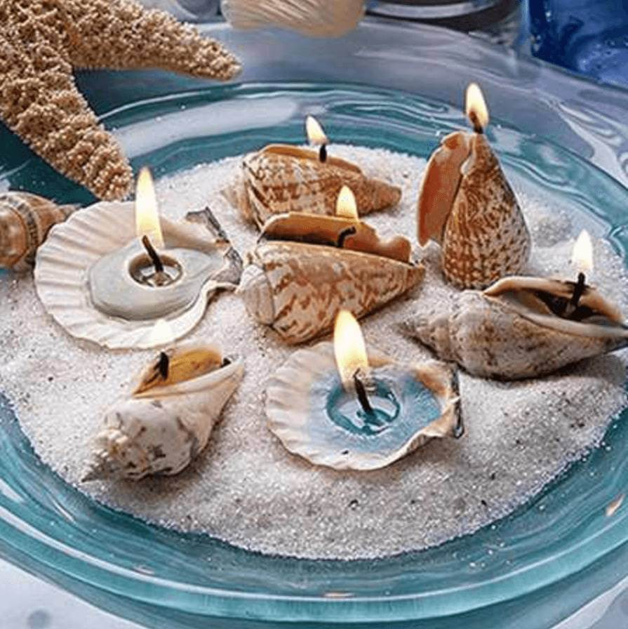 Seashell Candle Display