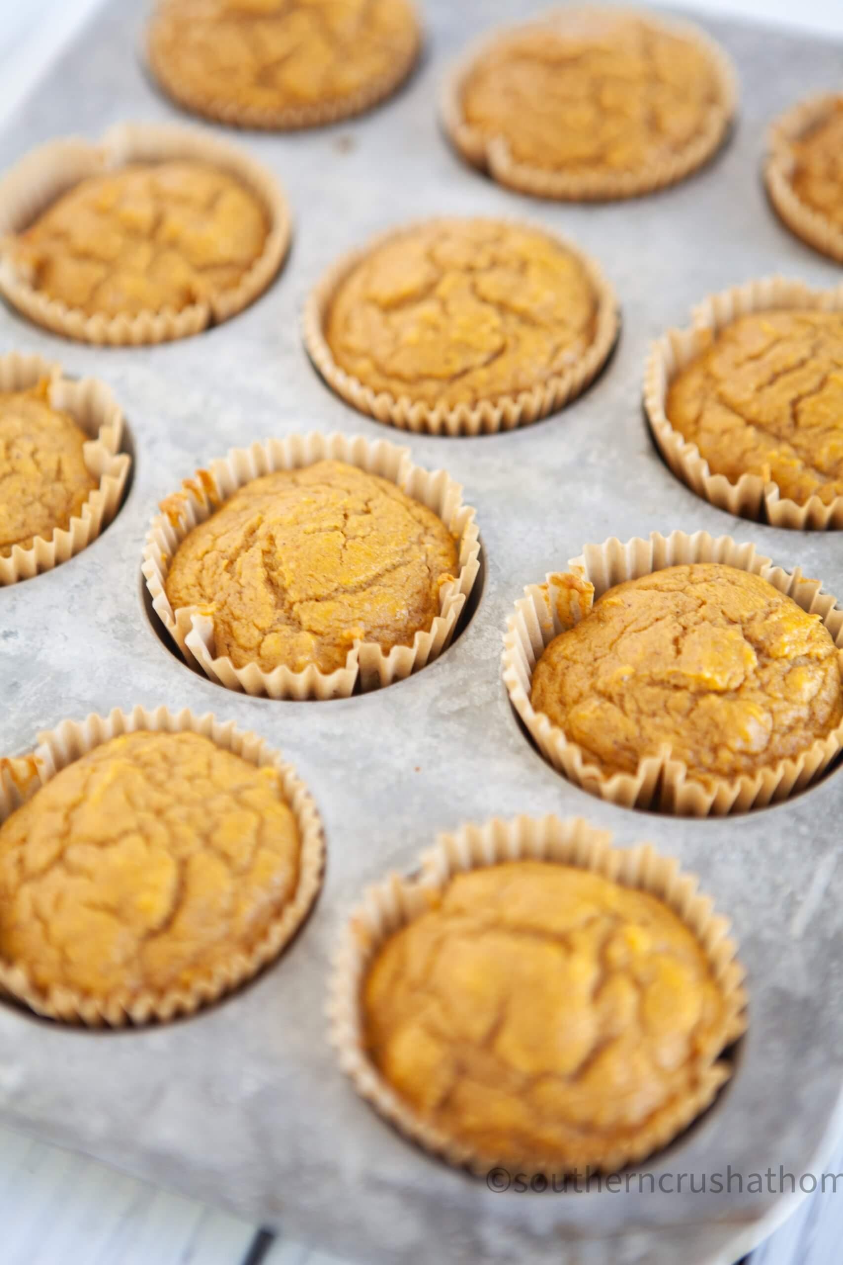 3 ingredient pumpkin muffins close up in pan