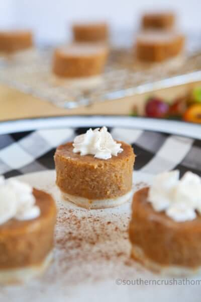 Mini Pumpkin Pies Shortcut final styled close up