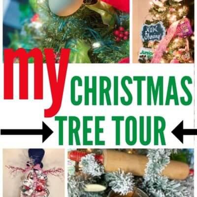 My Christmas Tree Tour