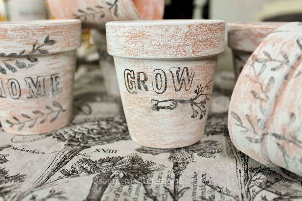 dollar tree stamped terra cotta pots with grown stamped on it