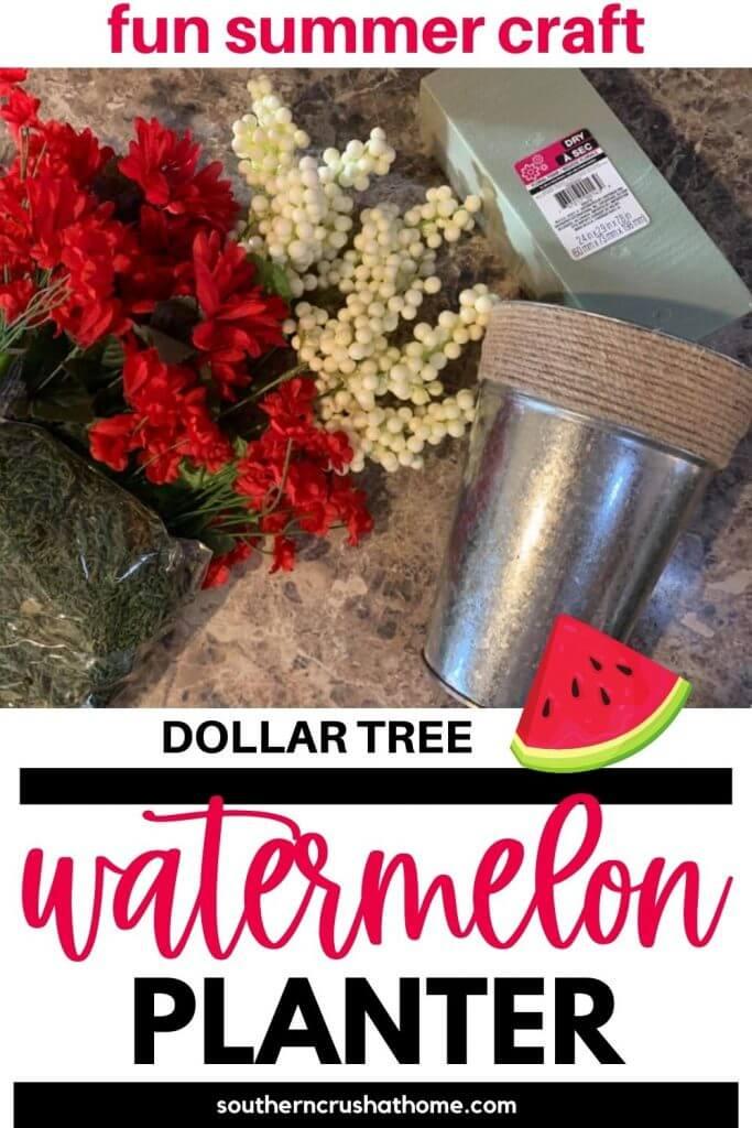 DT Watermelon Planter PIN