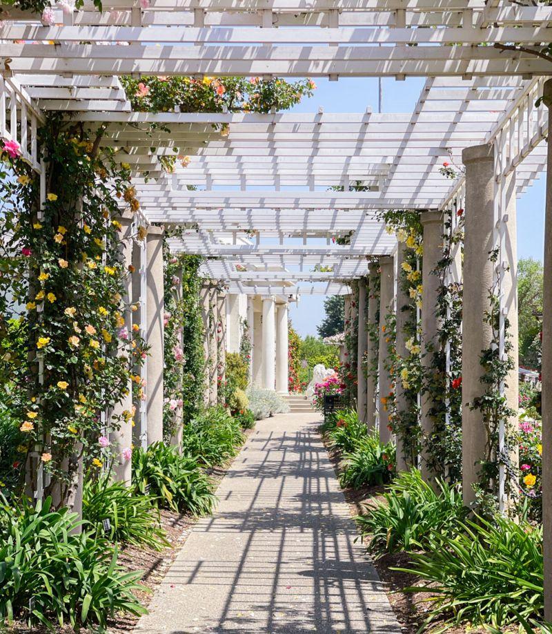 beautiful arbor garden