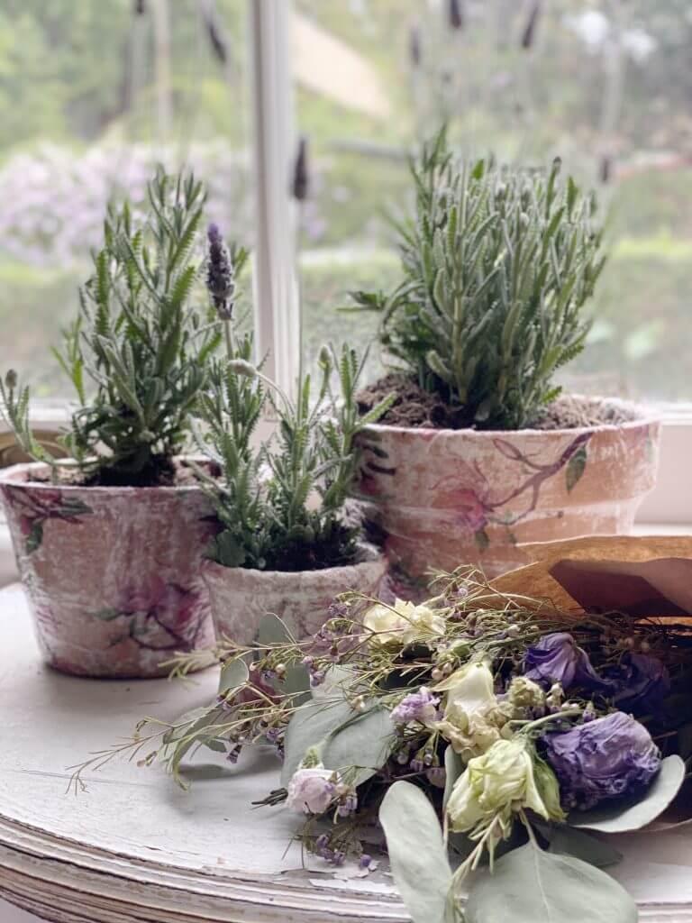 decoupage terracotta pots with lavender