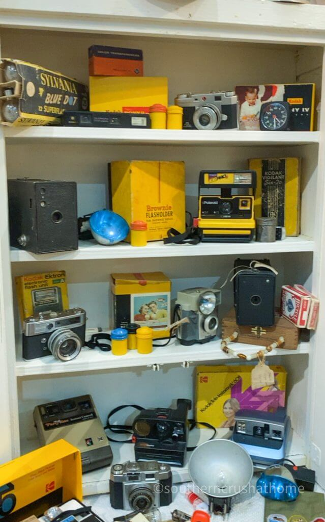 vintage camera collection display