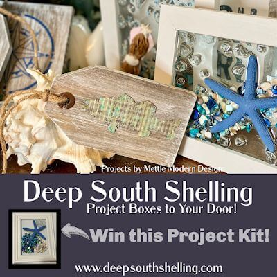 Deep South Shelling