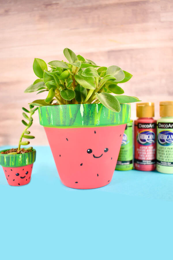 diy watermelon planter