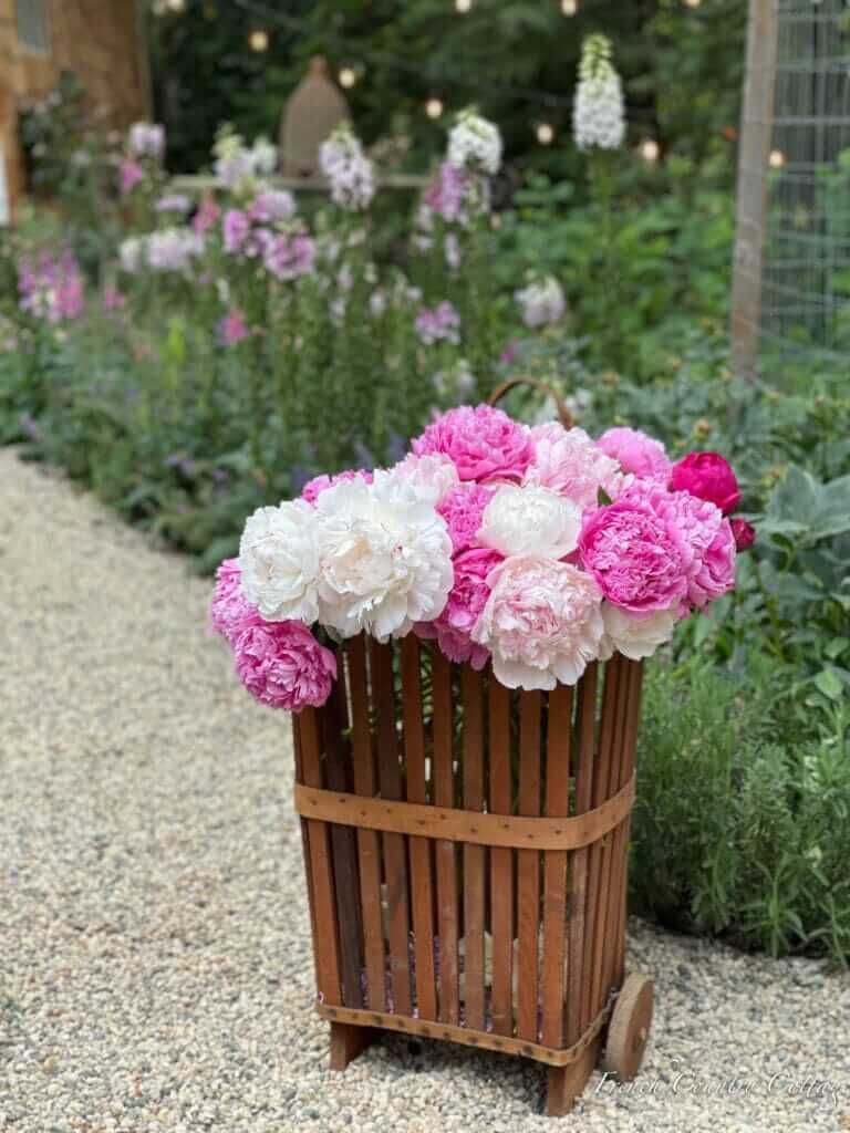 basket with summer flowers