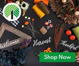 dollar tree fall craft supplies