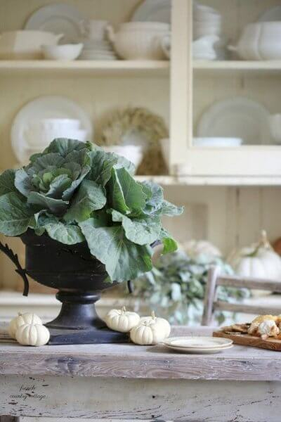 early fall decor cabbage and white pumpkins