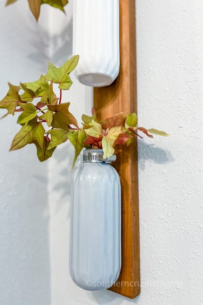 plant wall decor close up